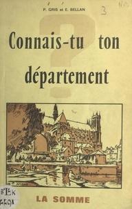 Étienne Bellan et Pierre Gris - La Somme.