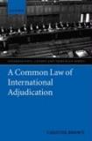 A Common Law of International Adjudication.