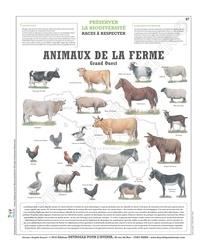 Deyrolle pour l'avenir - Animaux de la ferme - Grand Ouest, planche 66x80 recto/verso.