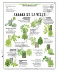 Deyrolle pour l'avenir - Arbres de la ville - Poster 50x60.