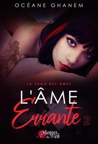 Du web éditions Plumes - L'Âme errante 2.