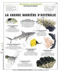 Deyrolle pour l'avenir - La grande barrière de corail - Poster 50x60.
