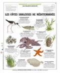 Deyrolle pour l'avenir - Les côtes sableuses de Méditerranée - Poster 50x60.
