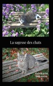 Abdelkarim Belkassem - La sagesse des chats.