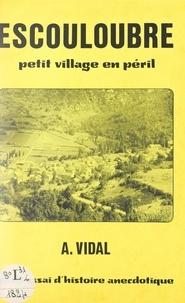 Achille Vidal - Escouloubre, petit village en péril - Petit essai d'histoire anecdotique.