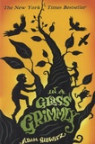 Adam Gidwitz - In the Class Grimmly.