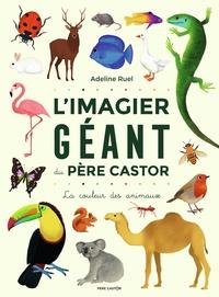 Adeline Ruel - L'Imagier géant du Père Castor - La couleur des animaux.