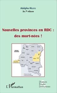 Adolphe Muzito - Nouvelles provinces en RDC : des morts-nées !.