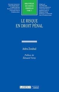 Adra Zouhal - Le risque en droit pénal.