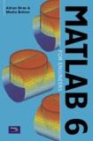 Adrian Biran et Moshe Breiner - Matlab 6 for Engineers.