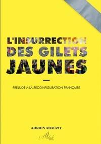 Adrien Abauzit - L'Insurrection des Gilets Jaunes.