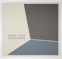 Adrien Boyer - Consonances.