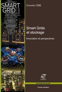 Smart Grids et stockage - Innovations et perspectives.pdf