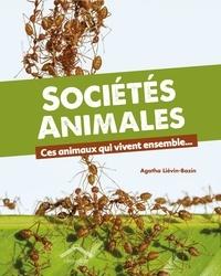 Agatha Liévin-Bazin - Sociétés animales - Ces animaux qui vivent ensemble....