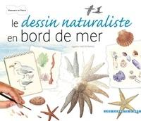 Agathe Haevermans - Le dessin naturaliste en bord de mer.