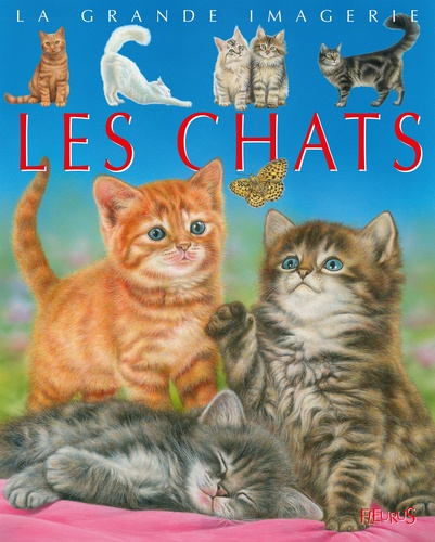 Agnès Vandewiele et Bernard Alunni - Les chats.