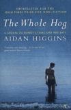 Aidan Charles Higgins - .