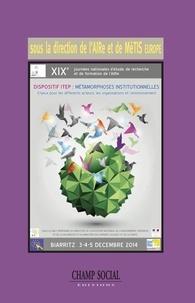 AIRe et  MèTIS Europe - Dispositif ITEP : métamorphoses institutionnelles - Enjeux pour les differents acteurs, les organisations et l'environnement.