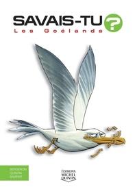 Alain Bergeron et Michel Quintin - Les goélands.
