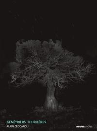 Alain Ceccaroli - Genévriers thurifères (juniperus thurifera).