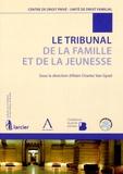 Alain-Charles Van Gysel - Le tribunal de la famille et de la jeunesse.