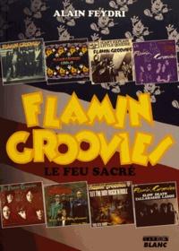 Alain Feydri - Flamin Groovies - Le feu sacré.
