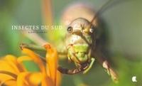 Alain Fournier - Insectes du sud.