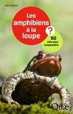 Alain Morand - Les amphibiens à la loupe - 60 clés pour comprendre.