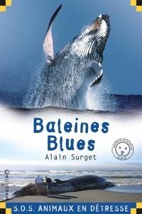 Alain Surget - Baleines blues.