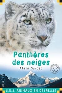 Panthère des neiges - Alain Surget pdf epub