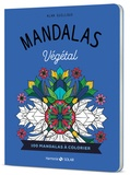 Alan Guilloux - Mandalas végétal.