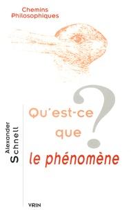Alexander Schnell - Qu'est-ce que le phénomène ?.