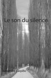 Alexandre Carpillo - Le son du silence.