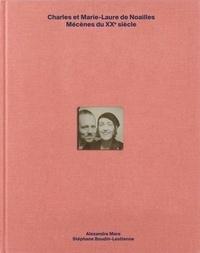 Alexandre Mare et Stéphane Boudin-Lestienne - Charles et Marie-Laure de Noailles - Mécènes du XXe siècle.