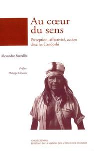 Alexandre Surrallés - Au coeur du sens - Perception, affectivité, action chez les Candoshi.