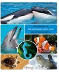 Alexia Romatif - Je découvre les animaux de la mer en m'amusant....