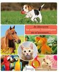 Alexia Romatif et Christine Pompéï - Je découvre les animaux domestiques en m'amusant....