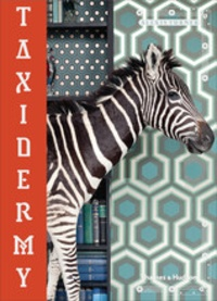 Taxidermy - Alexis Turner   Showmesound.org