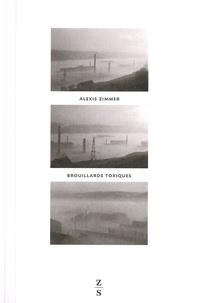 Alexis Zimmer - Brouillards toxiques - Vallée de la Meuse, 1930, contre-enquête.
