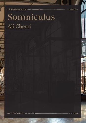 Ali Cherri et Osei Bonsu - Somniculus - Ali Cherri.