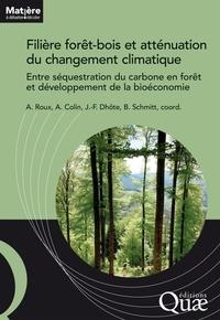 Alice Roux et Antoine Colin - Filière forêt-bois et atténuation du changement climatique - Entre séquestration du carbone en forêt et développement de la bioéconomie.