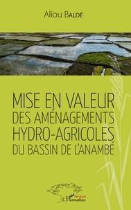 Mise en valeur des aménagements hydro-agricoles du bassin de lAnambé.pdf