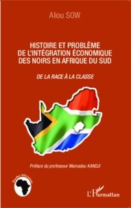Aliou Sow - Histoire et problème de l'intégration économique des noirs en Afrique du Sud - De la race à la classe.