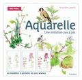Amandine Labarre - Aquarelle - Une initiation pas à pas.