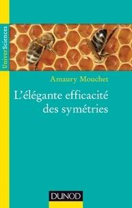 Amaury Mouchet - L'élégante efficacité des symétries.