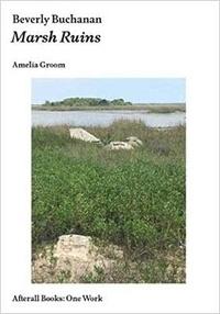 Amelia Groom - Beverly Buchanan - Marsh Ruins.
