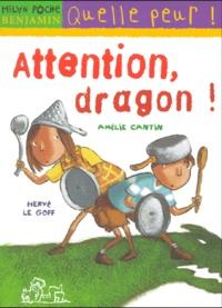 Deedr.fr Attention, dragon! Image