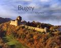 Amis du château des Allymes - Bugey, le chateau des Allymes.