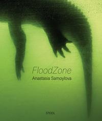 Livres audio anglais texte téléchargement gratuit Floodzone en francais 9783958296336