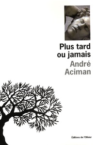 André Aciman - Plus tard ou jamais.